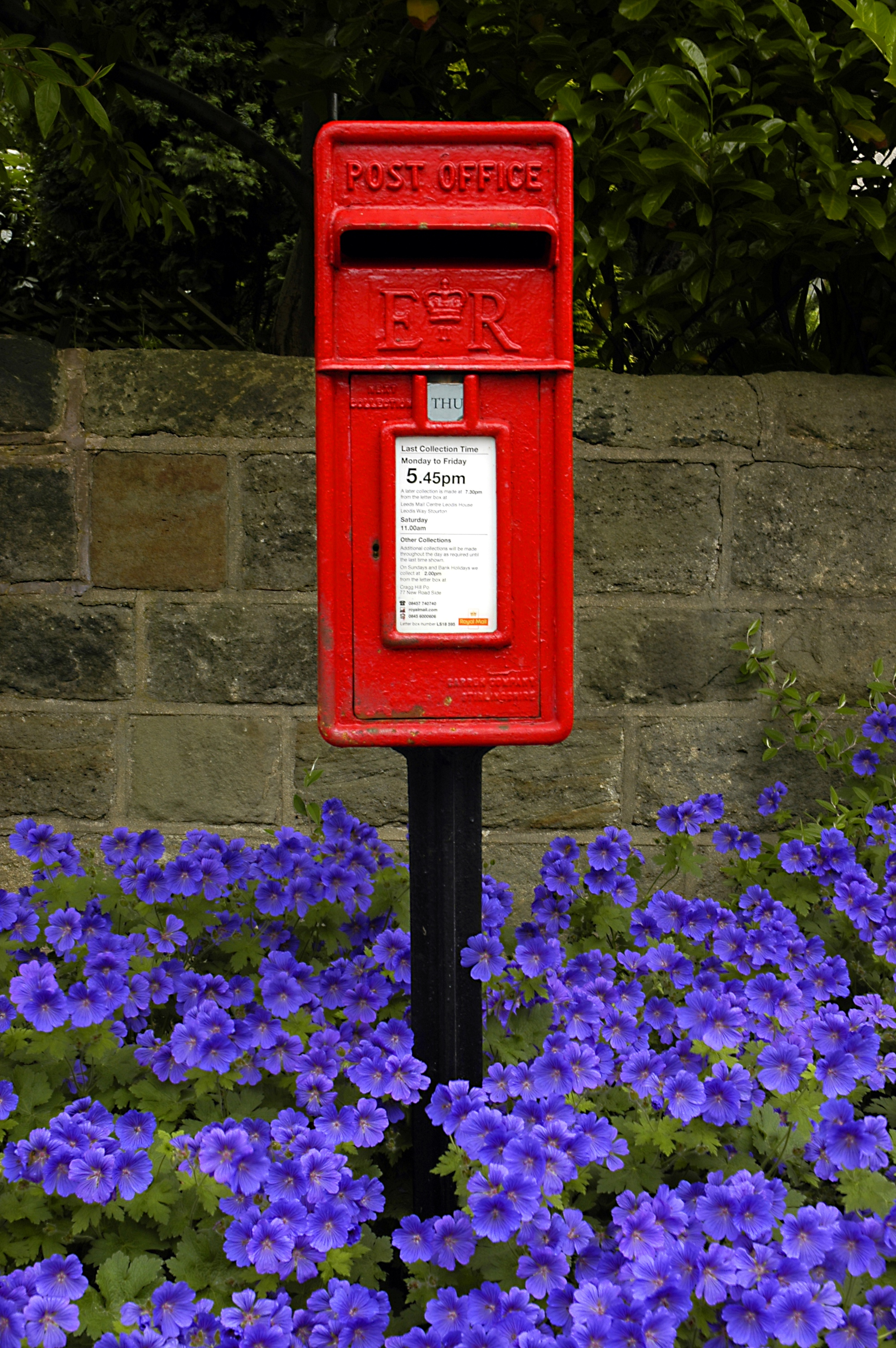 photo of an English post box in amongst blue flowers